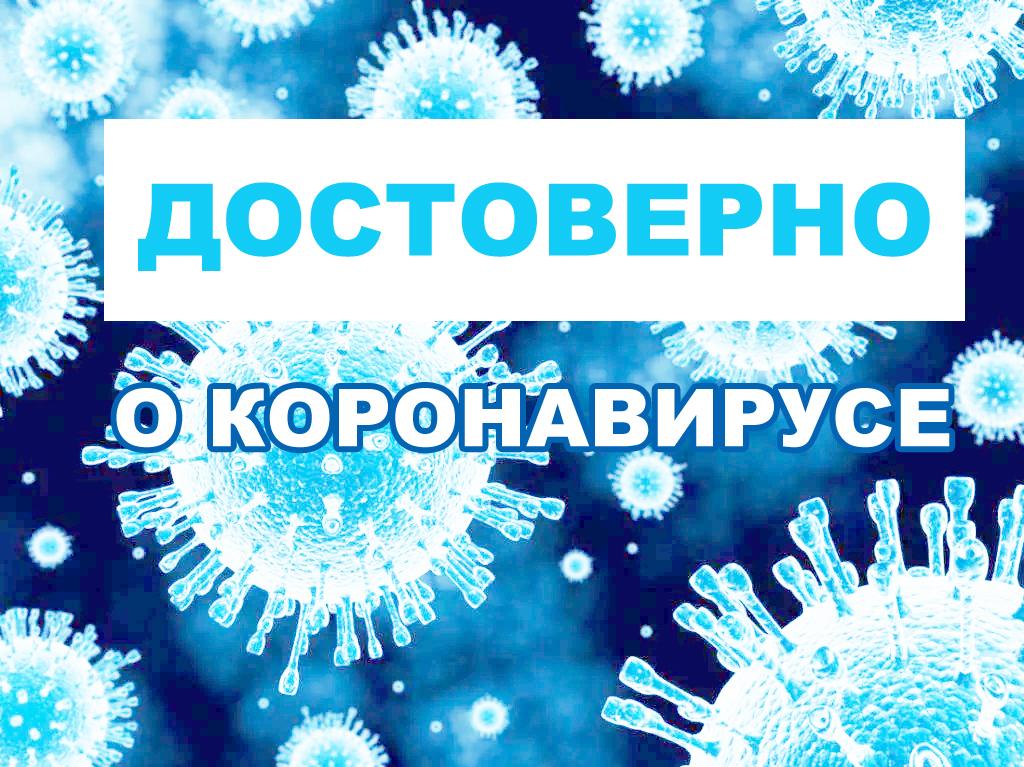 вирус
